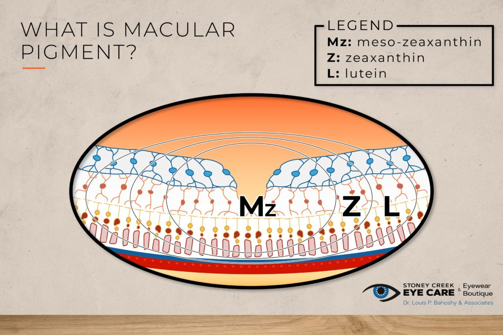 A diagram showing the 3 macular pigments meso-zeaxanthin, zeaxanthin, and lutein